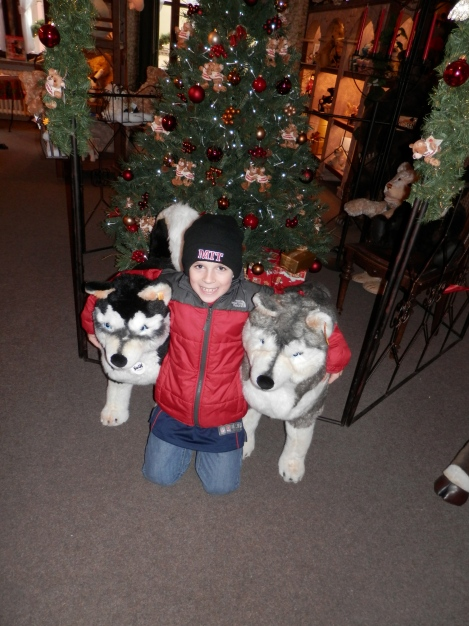 Sam with two huskies in Rothenburg